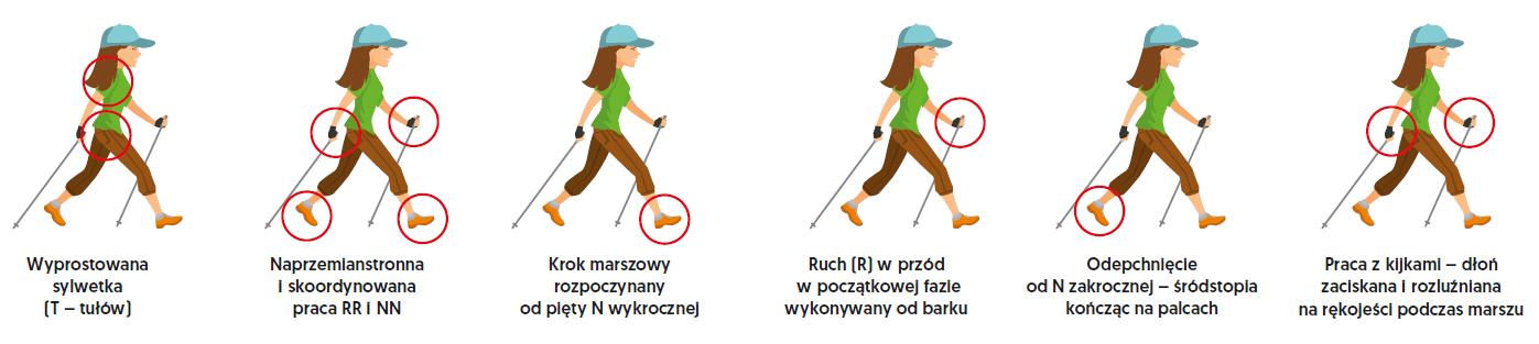 Technika nordic walking dla najmłodszych – wstępny etap nauczania ze  sprzętem zastępczym (ćwiczenia wprowadzające z laskami gimnastycznymi) -  Czasopismo Wychowanie Fizyczne i Zdrowotne | dwumiesięcznik dla nauczycieli  wychowania fizycznego